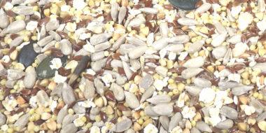 Mélange de graines pour pain et autres